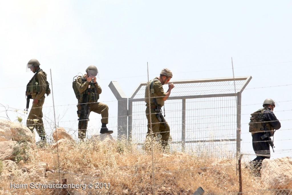 Bil'in 03/06/2011 | IMG_8017