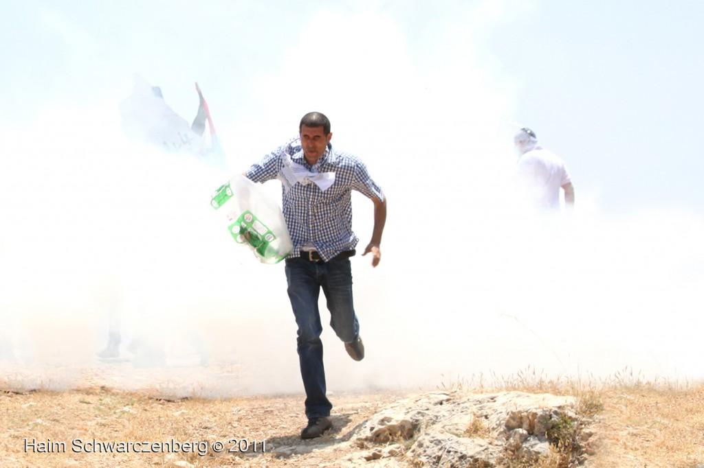 Bil'in 03/06/2011 | IMG_8022