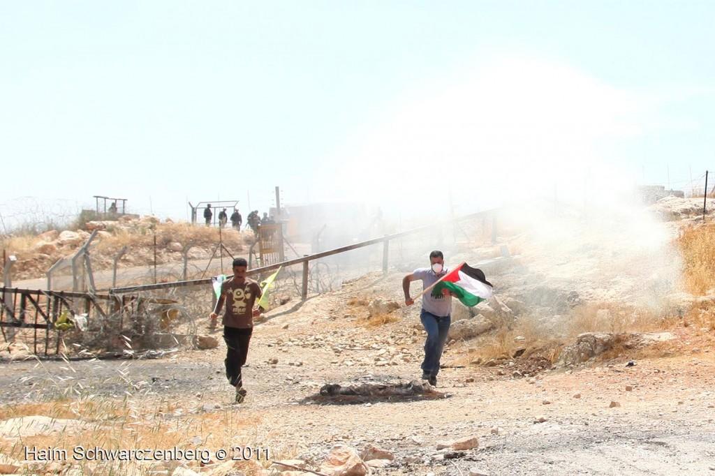 Bil'in 03/06/2011 | IMG_8082
