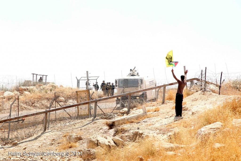 Bil'in 03/06/2011 | IMG_8090