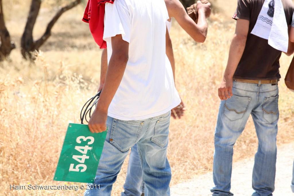 Bil'in 03/06/2011 | IMG_8128