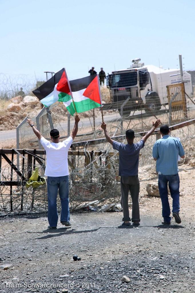 Bil'in 10/06/2011 | IMG_8372