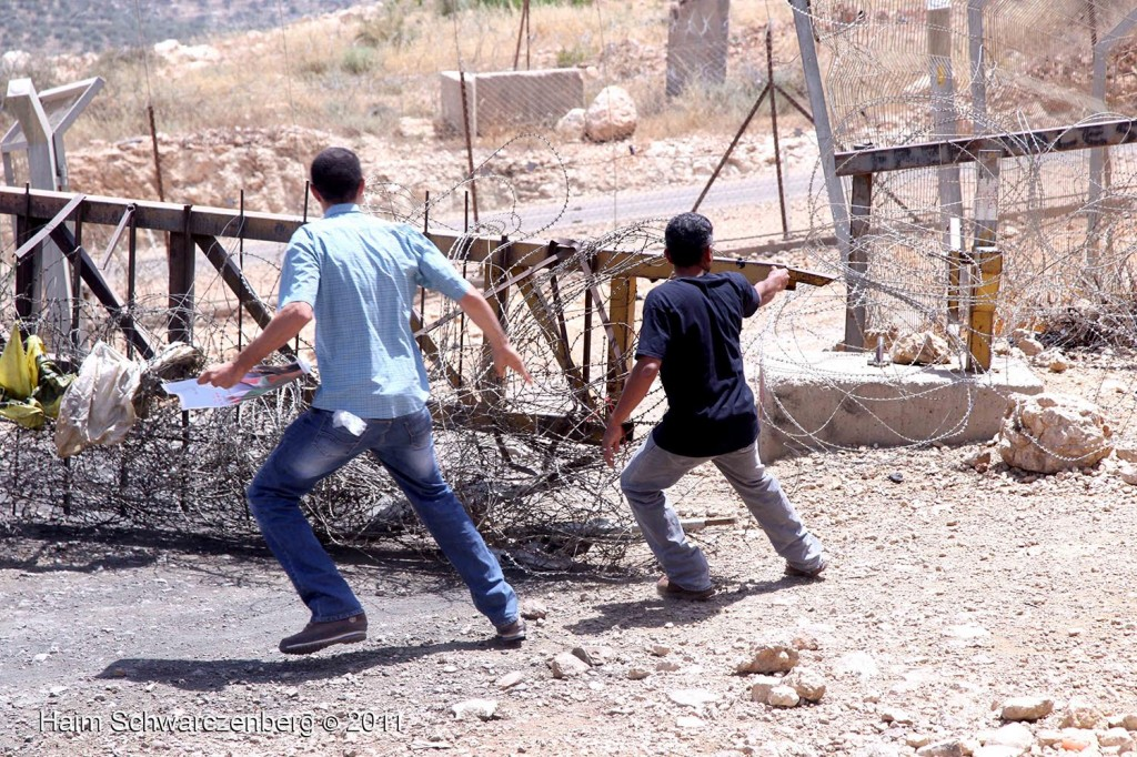 Bil'in 10/06/2011 | IMG_8385