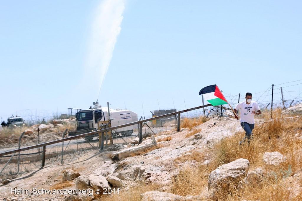 Bil'in 10/06/2011 | IMG_8397