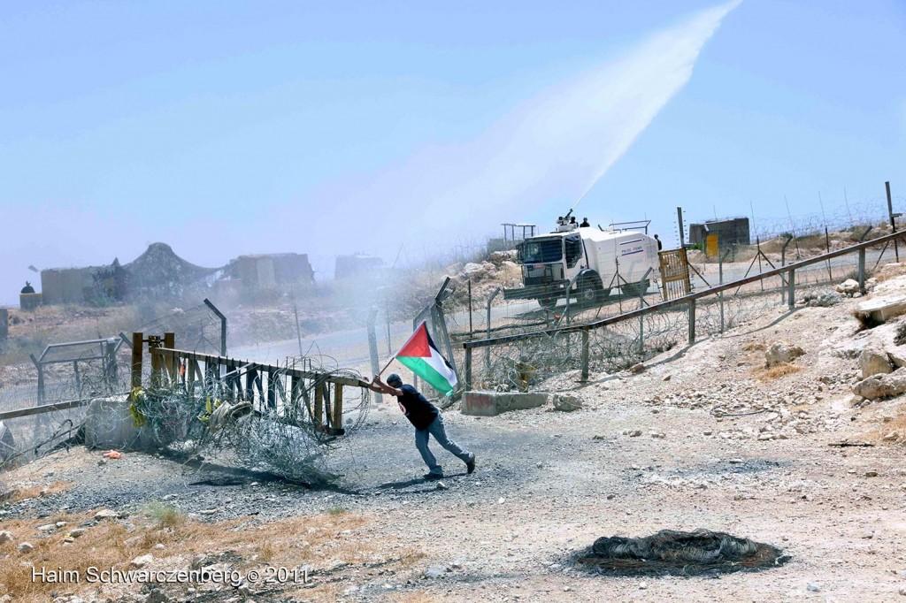 Bil'in 10/06/2011 | IMG_8418