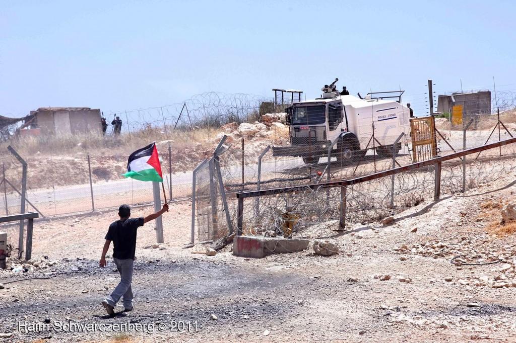 Bil'in 10/06/2011 | IMG_8427