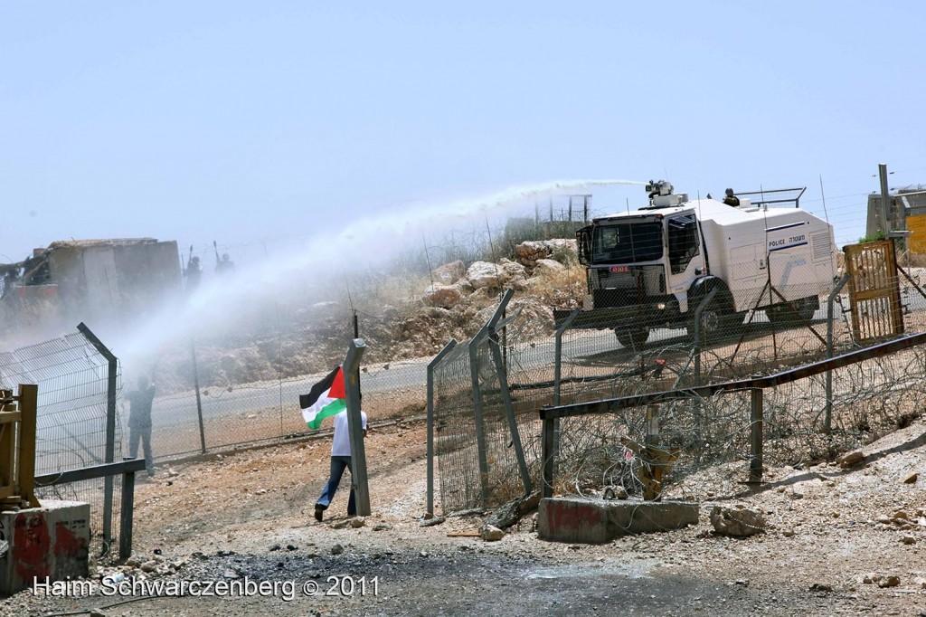 Bil'in 10/06/2011 | IMG_8444