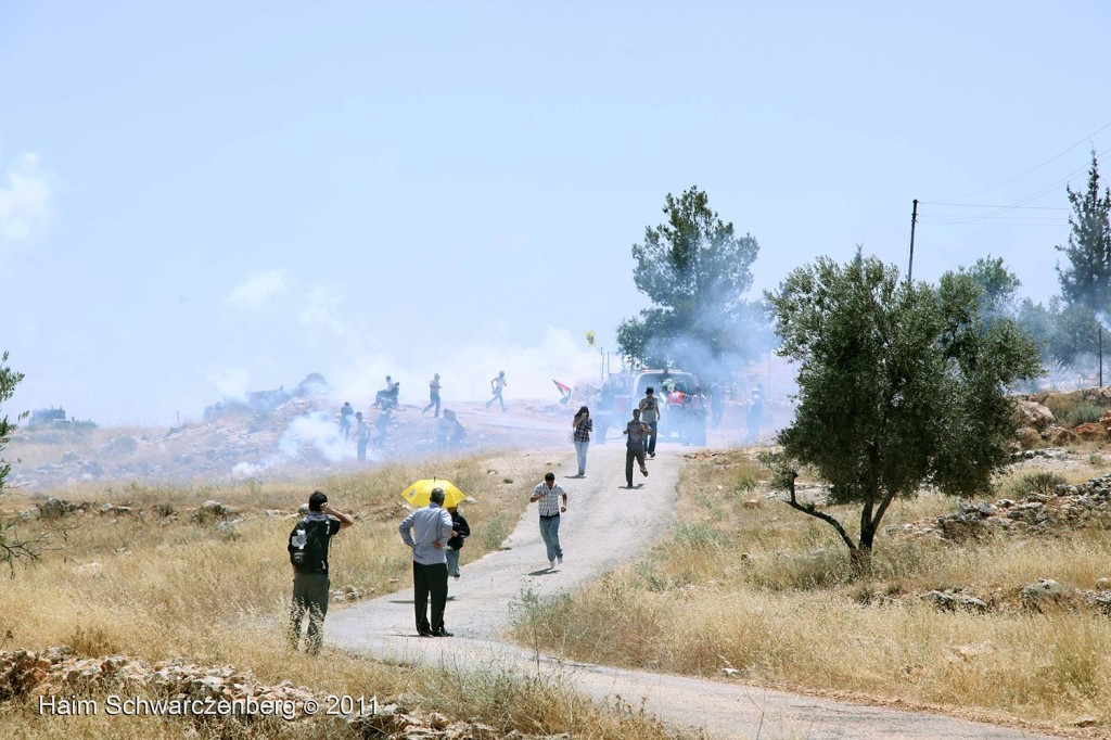 Bil'in 10/06/2011 | IMG_8458