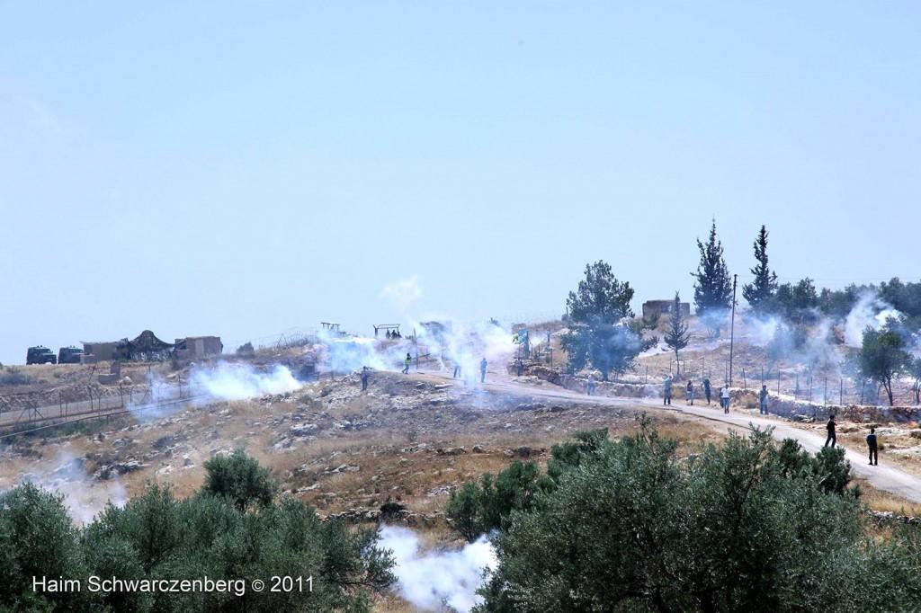 Bil'in 10/06/2011 | IMG_8465
