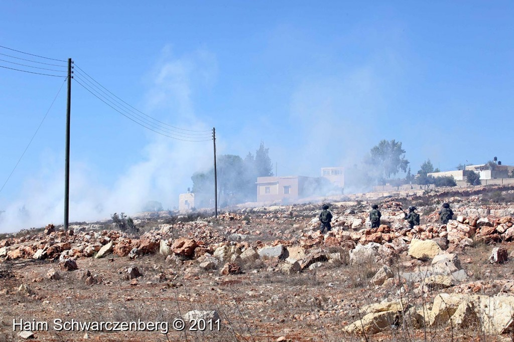 Nabi Saleh 14/10/2011 | IMG_7025