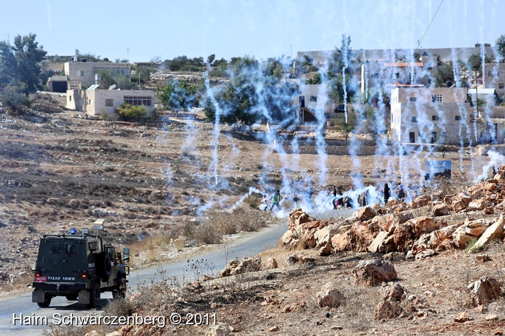 Nabi Saleh 14/10/2011 | IMG_7082