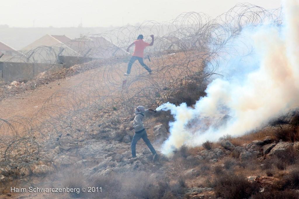 Bil'in 21/10/2011 | IMG_8301