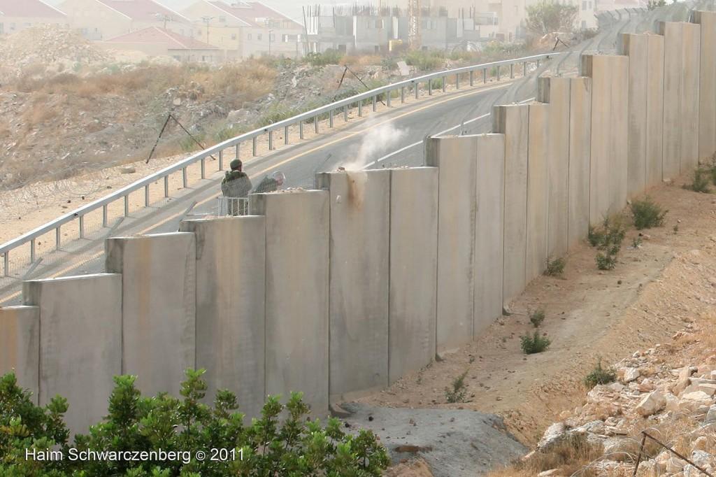 Bil'in 21/10/2011 | IMG_8336