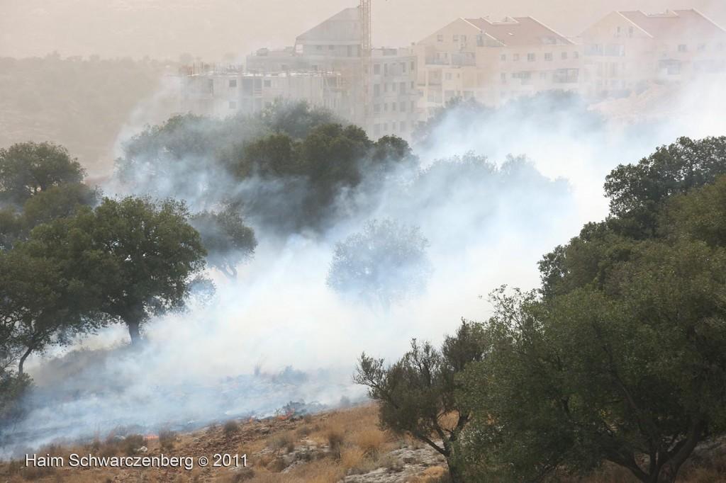 Bil'in 21/10/2011 | IMG_8460