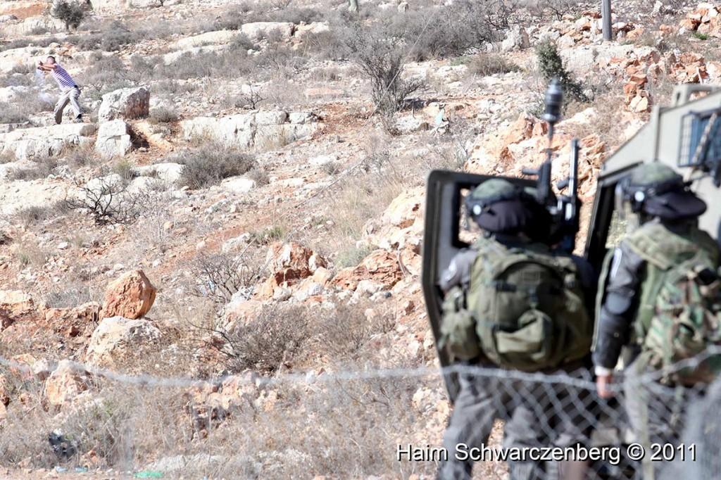 Nabi Saleh 28/10/2011 | IMG_9553