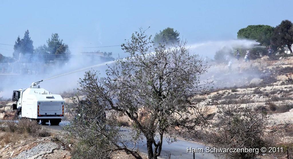 Nabi Saleh 28/10/2011 | IMG_9596