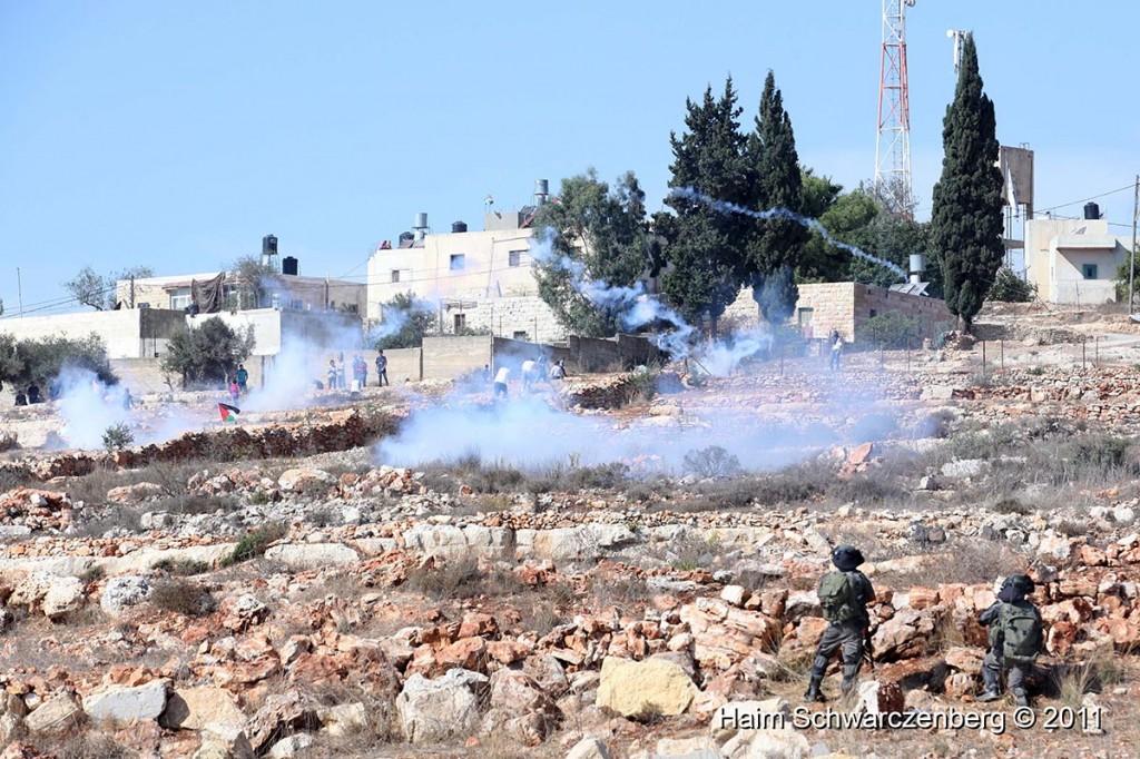 Nabi Saleh 28/10/2011 | IMG_9626