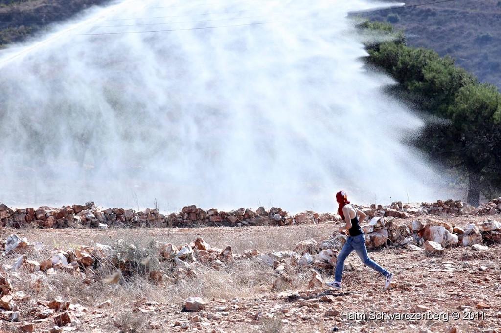 Nabi Saleh 28/10/2011 | IMG_9665