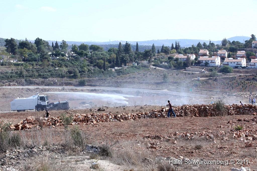 Nabi Saleh 28/10/2011 | IMG_9749