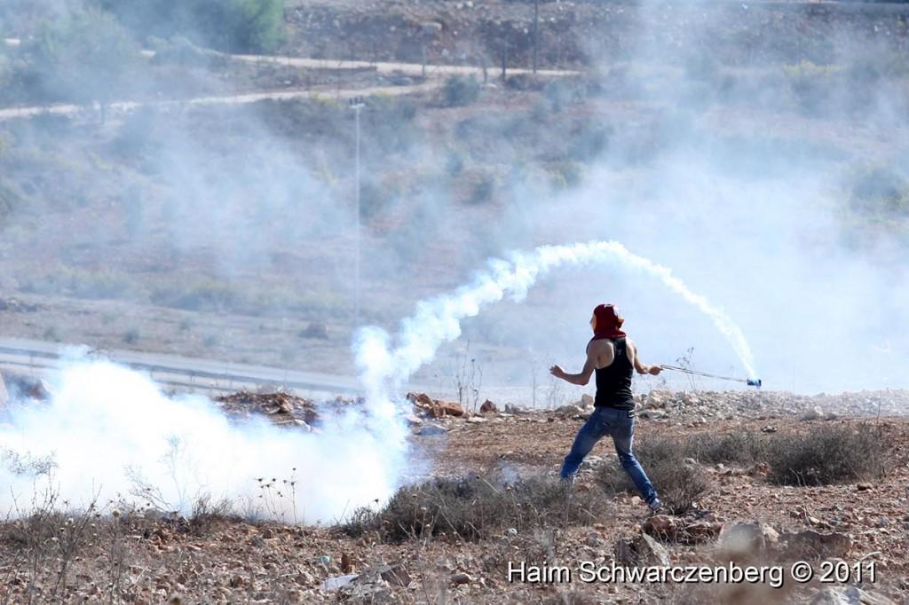 Nabi Saleh 28/10/2011 | IMG_9783