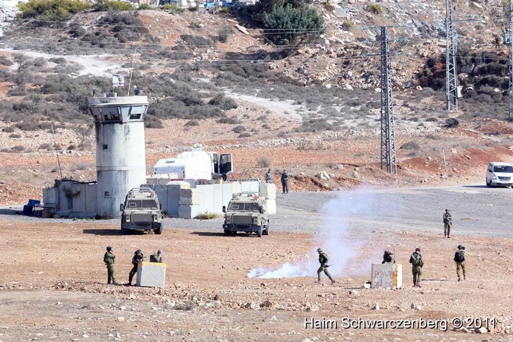 Nabi Saleh 28/10/2011 | IMG_9799