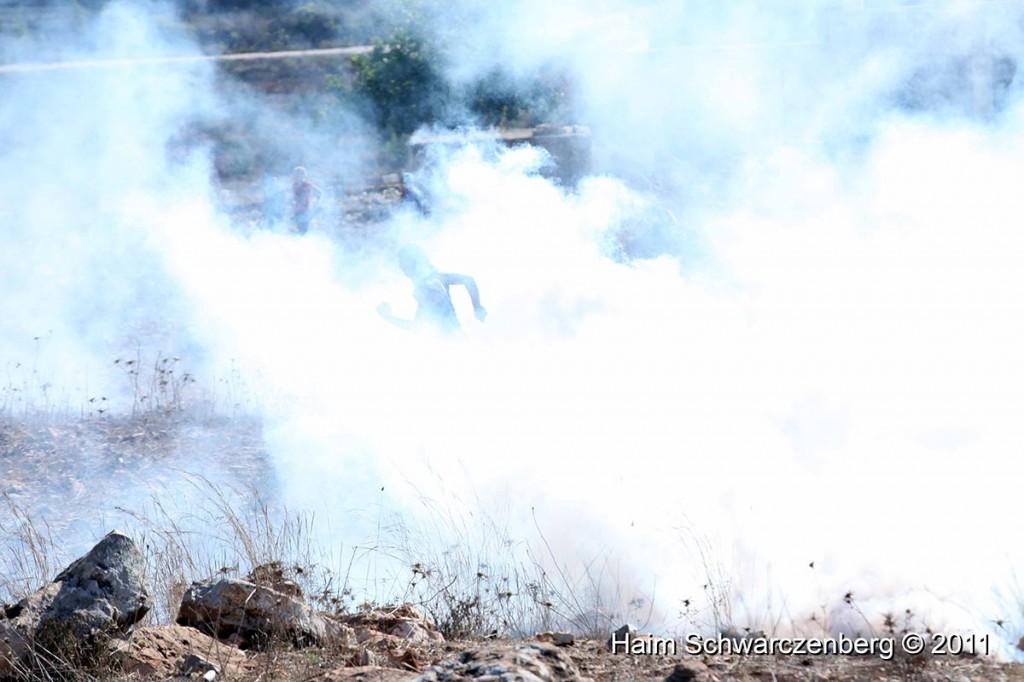 Nabi Saleh 28/10/2011 | IMG_9800