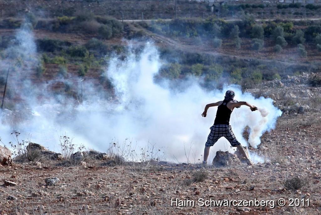 Nabi Saleh 28/10/2011 | IMG_9841