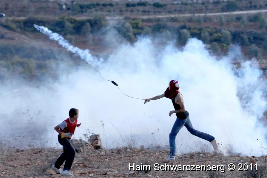 Nabi Saleh 28/10/2011 | IMG_9846
