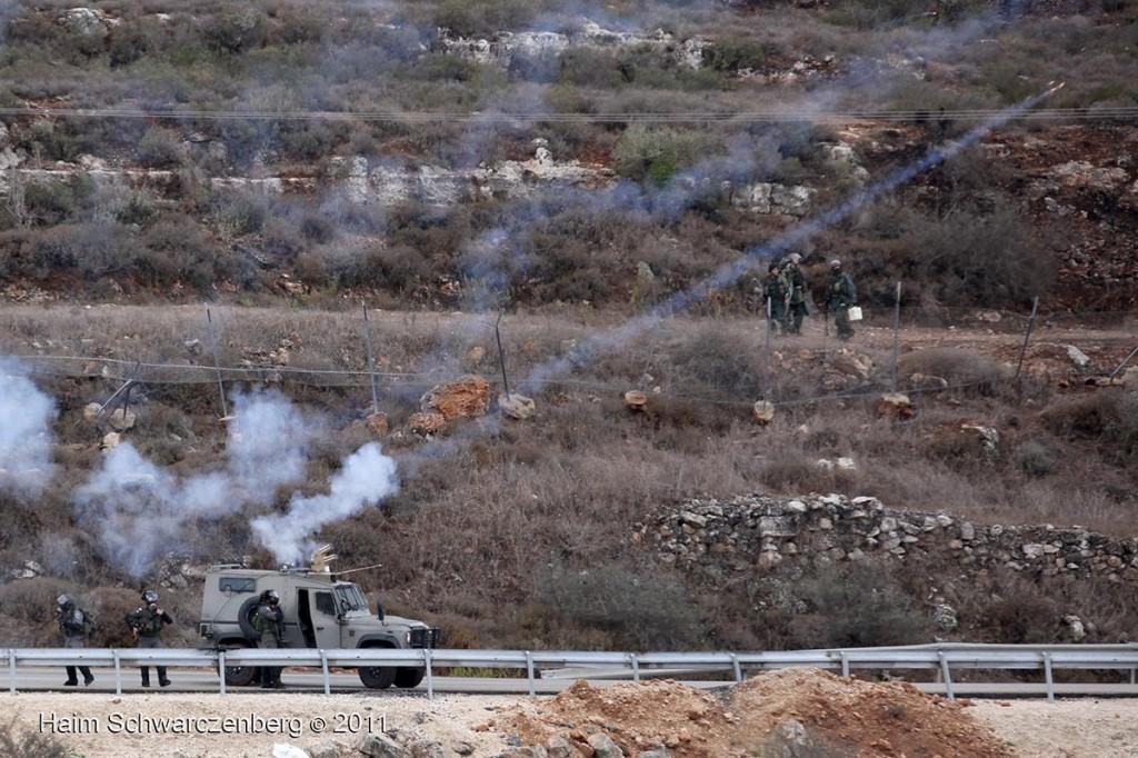 Nabi Saleh 04/11/2011 | IMG_0205