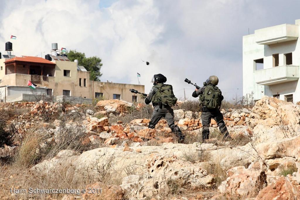 Nabi Saleh 04/11/2011 | IMG_0288