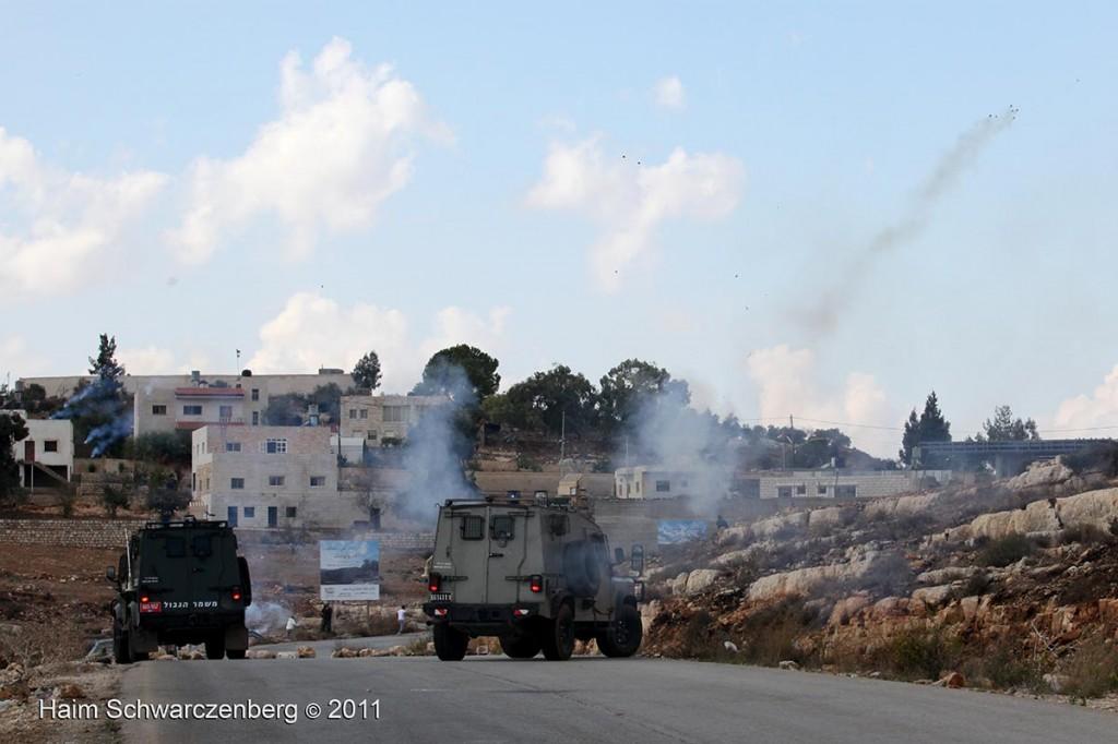 Nabi Saleh 04/11/2011 | IMG_0329