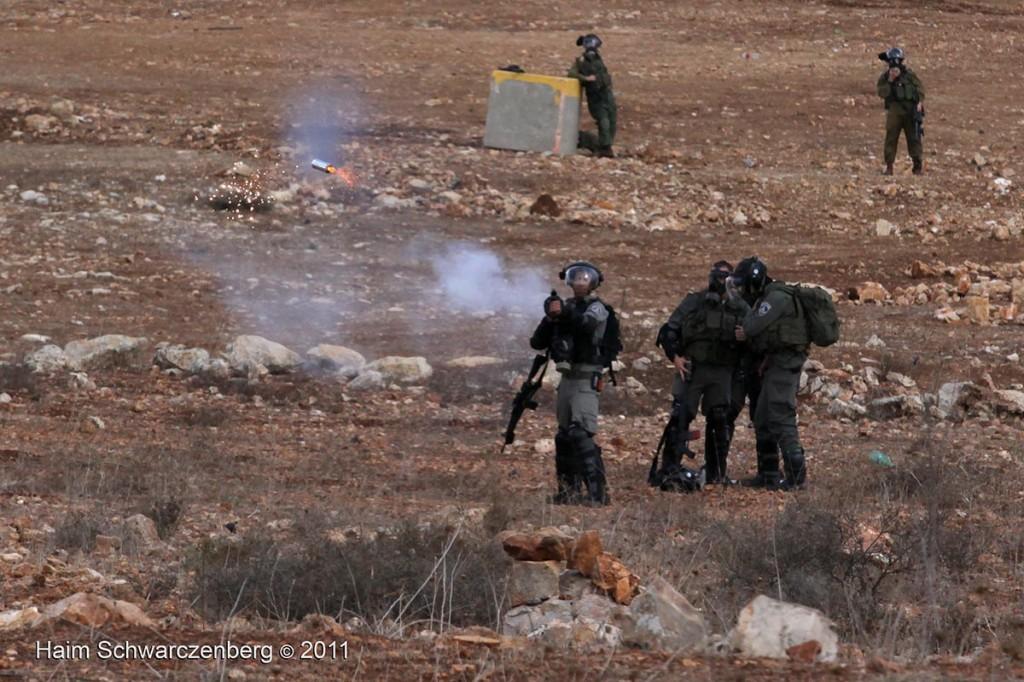 Nabi Saleh 04/11/2011 | IMG_0418