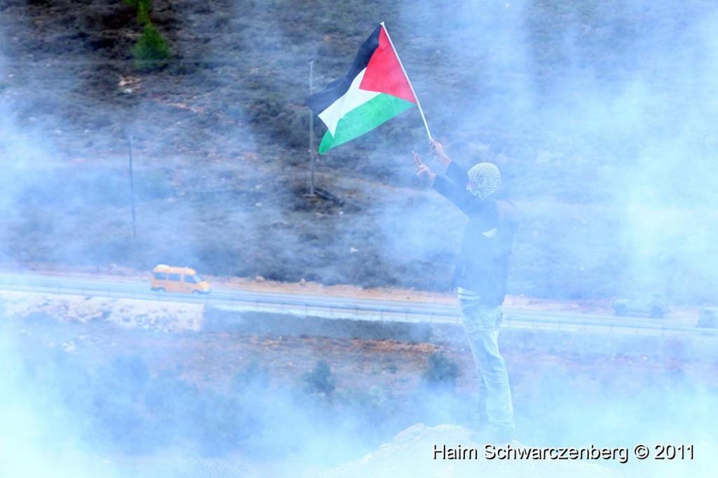 Nabi Saleh 18/11/2011 | IMG_2331