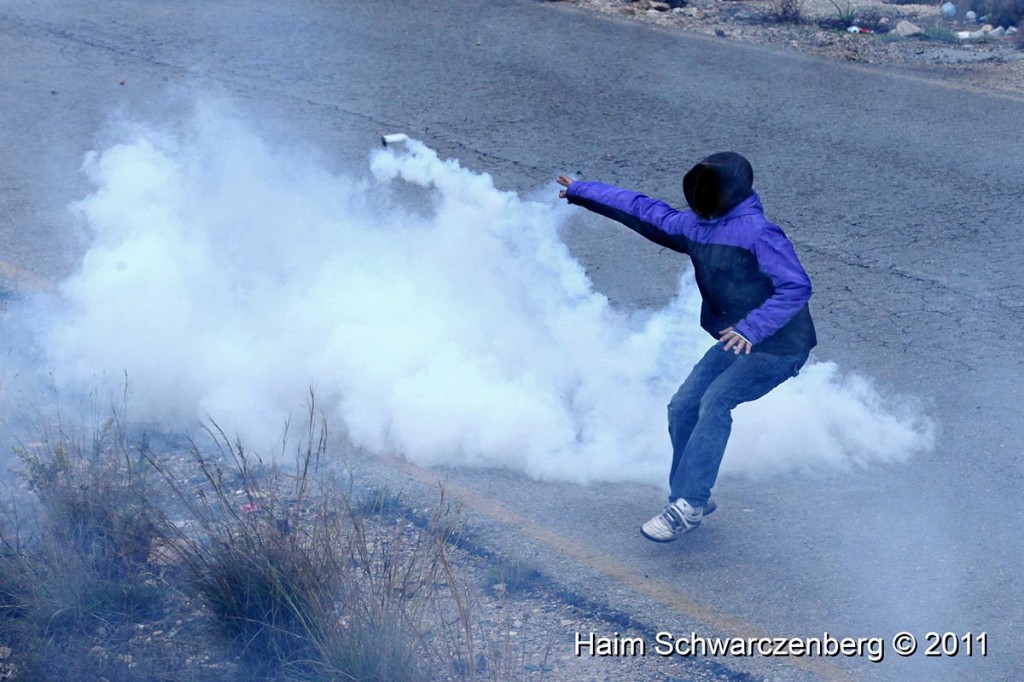 Nabi Saleh 18/11/2011 | IMG_2454