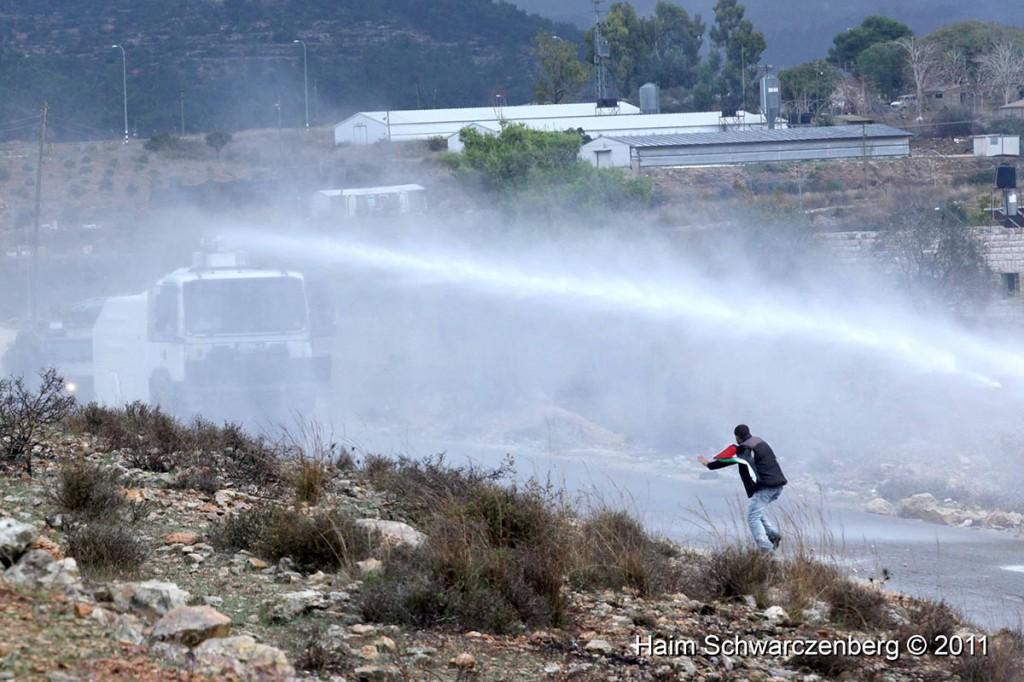 Nabi Saleh 18/11/2011 | IMG_2565