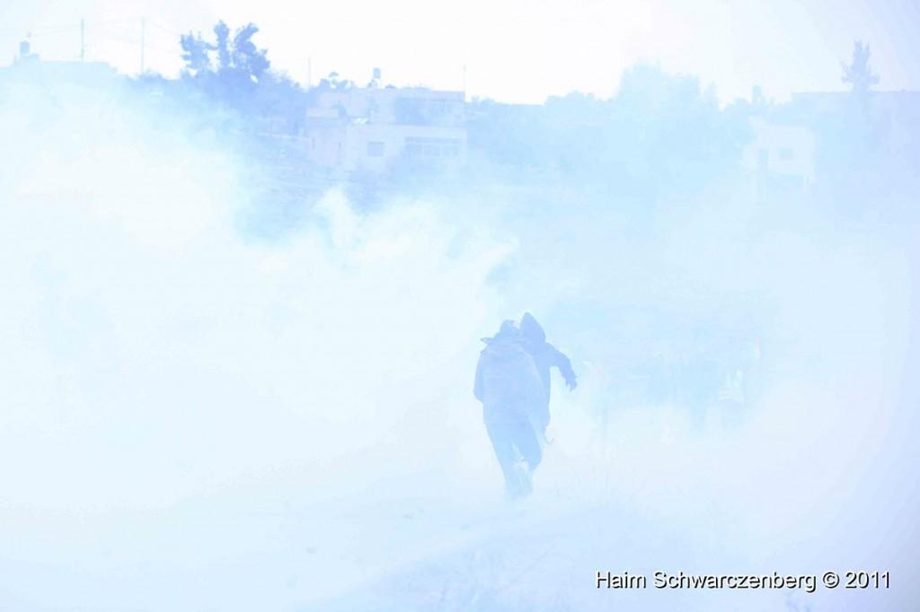 Nabi Saleh 18/11/2011 | IMG_2686