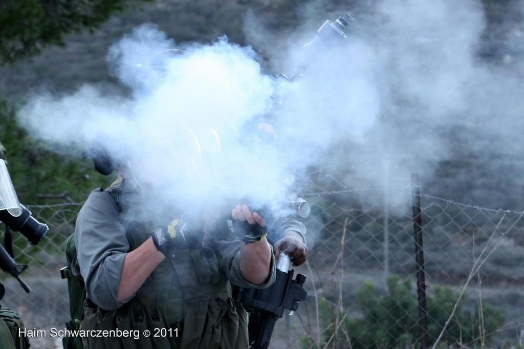 Nabi Saleh 09/12/2011 | IMG_7257