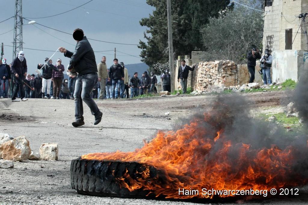 Kufr Qaddum 10/02/2012 | IMG_6984