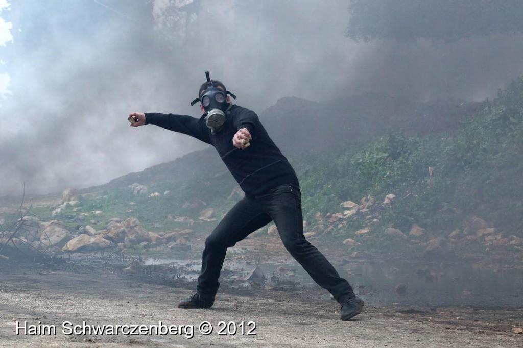 Kufr Qaddum 10/02/2012 | IMG_7110