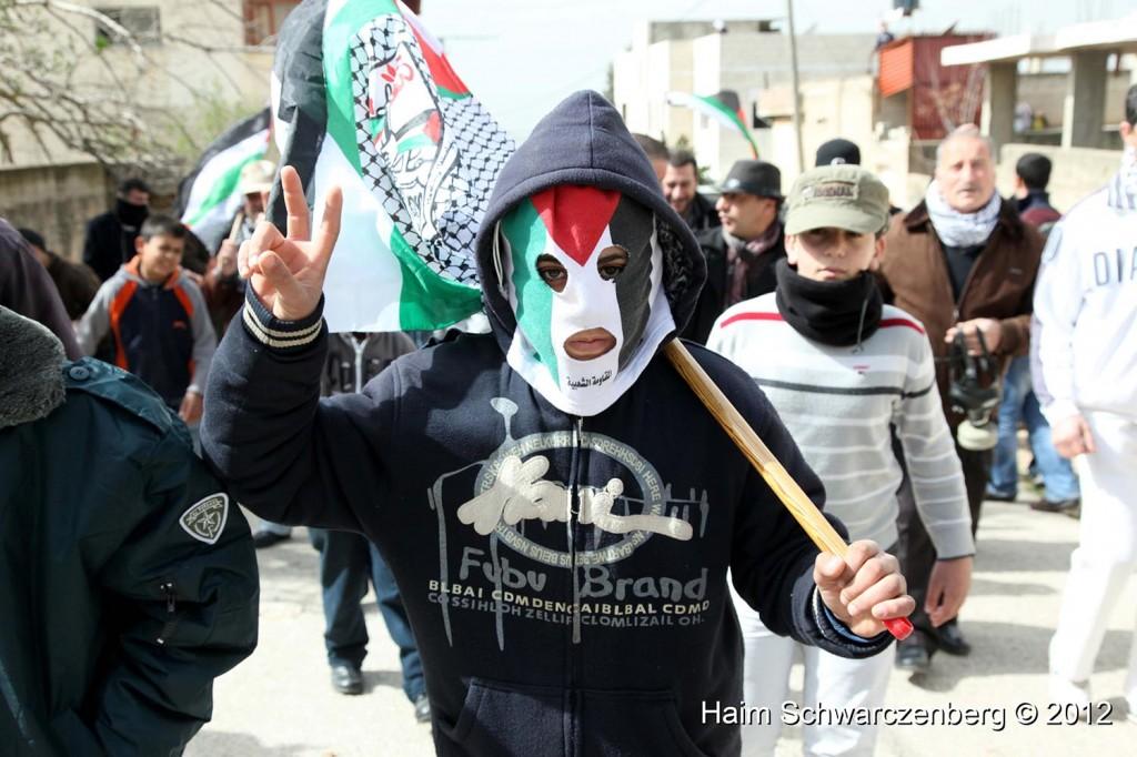 Kufr Qaddum 17/02/2012 | IMG_7706