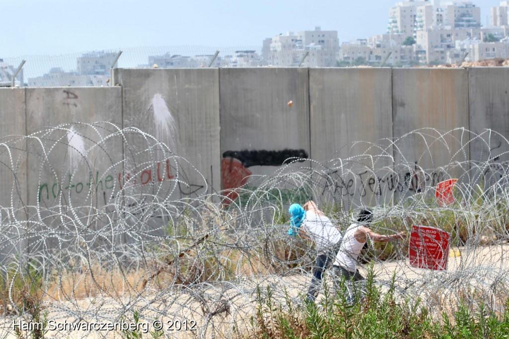 Bil'in 17/08/2012 | IMG_7544
