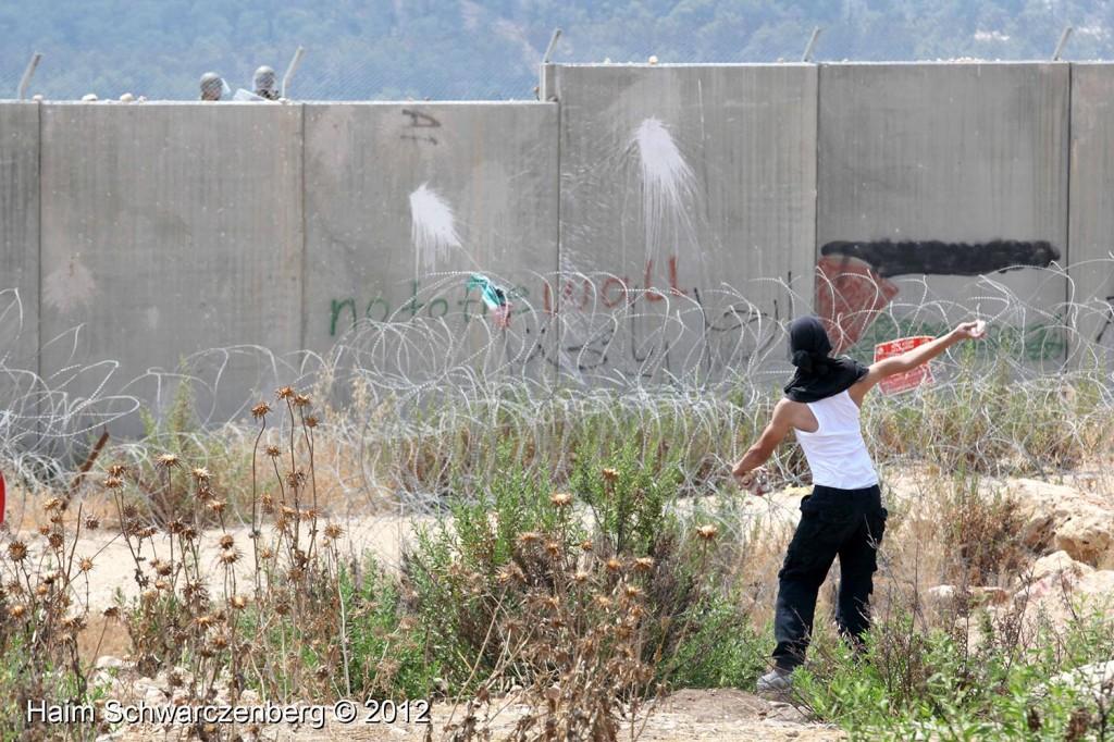 Bil'in 17/08/2012 | IMG_7556