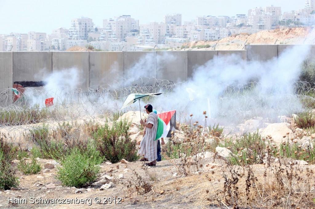 Bil'in 17/08/2012 | IMG_7566