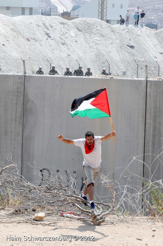 Bil'in 17/08/2012 | IMG_7582
