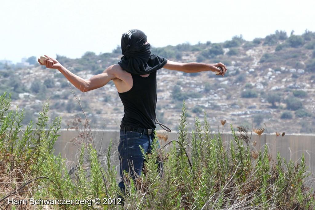 Bil'in 17/08/2012 | IMG_7623