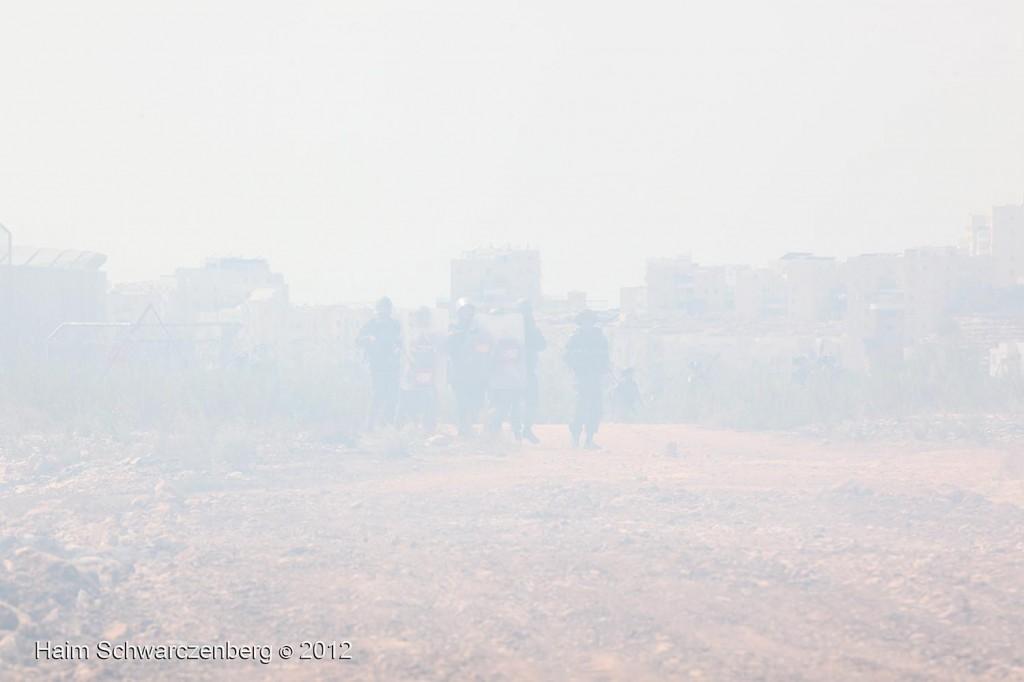 Bil'in 21/09/2012 | IMG_0047