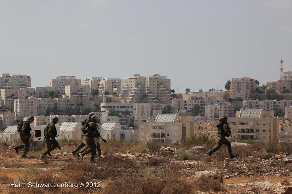 Bil'in 21/09/2012 | IMG_0062