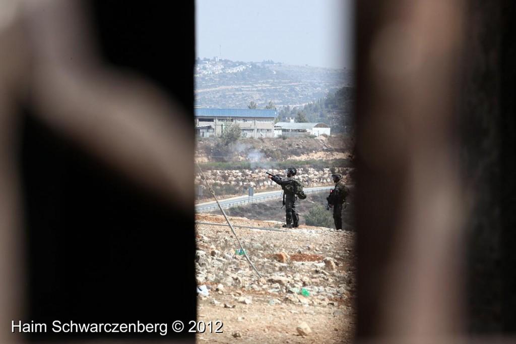 Nabi Saleh 28/09/2012 | IMG_0508