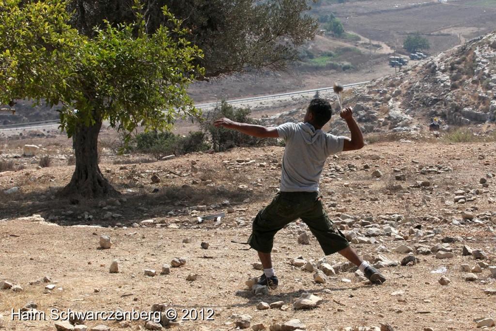 Nabi Saleh 28/09/2012 | IMG_0522