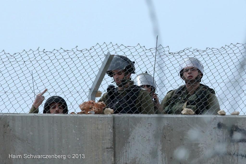 Bil'in 08/03/2013 | IMG_2917